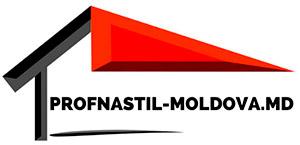 Logo profnastil-moldova.md